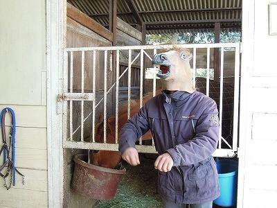 馬になってみる