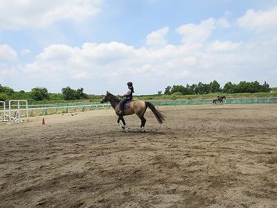 馬に乗るのに大切なのは運動神経ではなく内面
