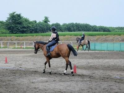 馬との一体感