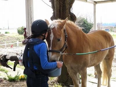 乗馬は愛情表現