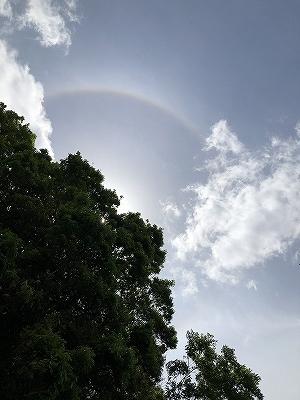 見上げると、虹。