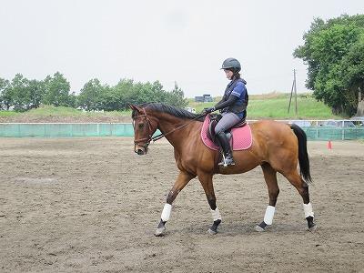 馬の気持ちになってハミ受けを考えてみよう