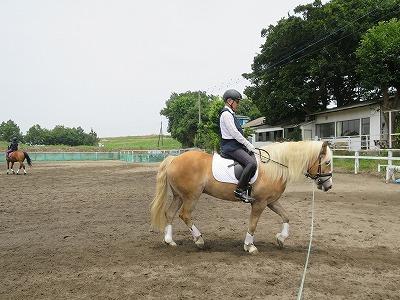 ハミ受けのコツは馬とのコミュニケーション