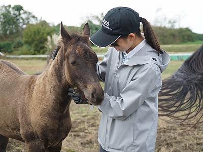 愛のある乗馬