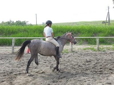 裸馬で楽しい練習