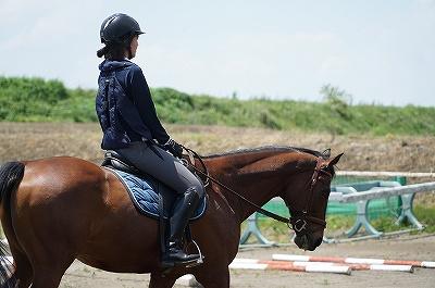 乗馬は集中力と丁寧さ