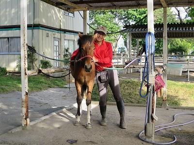 新馬調教 重みを教える