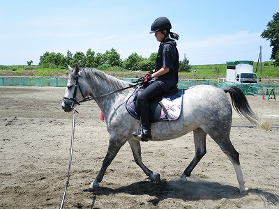 乗馬の楽しみ