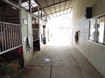 乗馬クラブウィッシュホースコミュニケーションズ厩舎