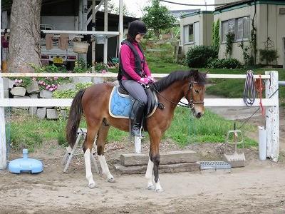 馬が好きなら