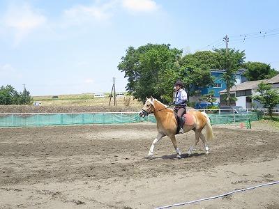 乗馬で颯爽と