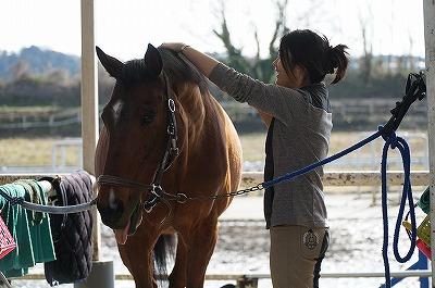 馬の嬉しそうな表情は幸せです