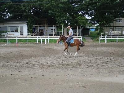 新馬調教 駈歩の練習
