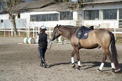 馬に信頼されるホースマン