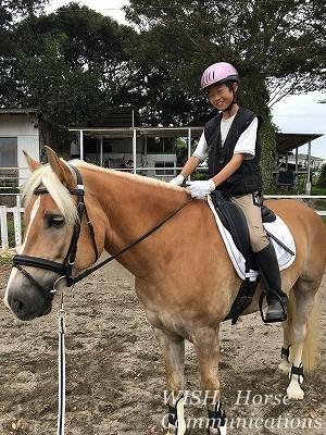 馬と人の笑顔