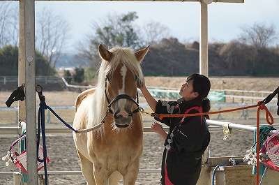 馬が幸せでなければただの奴隷使い