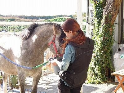 馬とエンパス共感力者
