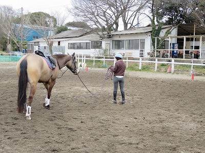 馬はとてもハートフル