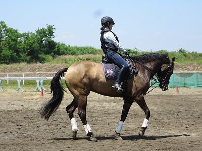 気持ちを合わせて馬とダンス!