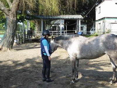 馬との幸せな時間