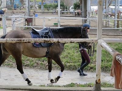 愛馬と息ぴったり