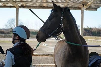 馬と心も寄り添って