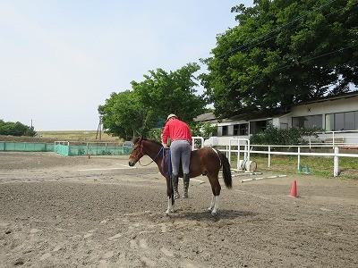 新馬調教 いつも馬のサインを見逃さない