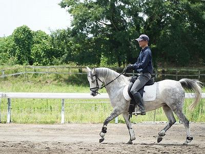 心はいつも馬と共にある