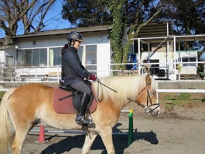 馬会話教室