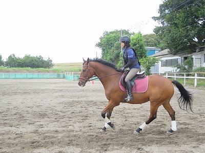 自分らしく楽しい乗馬