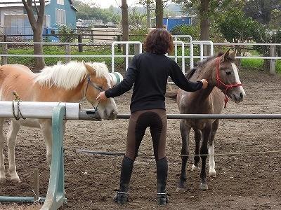 馬に好かれるにはやっぱり愛情