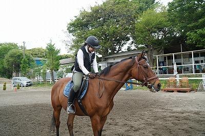 共感能力を高める乗馬をしよう