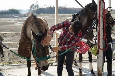 馬を喜ばせる乗馬