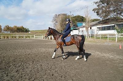 馬も人も楽しく練習