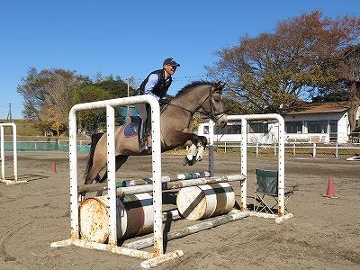 全ての馬には才能がある!