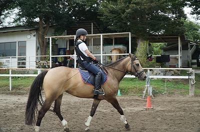 馬と見つめ合ているときの感覚