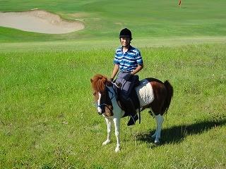 乗馬で癒しを
