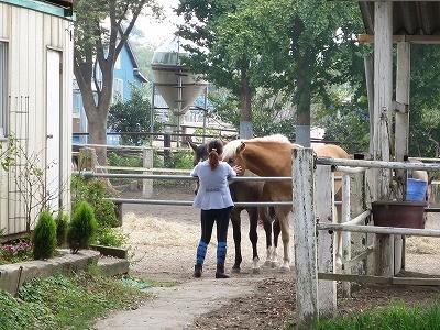 馬が寄って来てくれてとても嬉しい