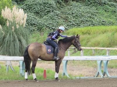ウィッシュの乗馬と馬の表情