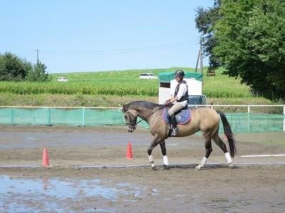 馬とWin-Winな乗馬をしよう!