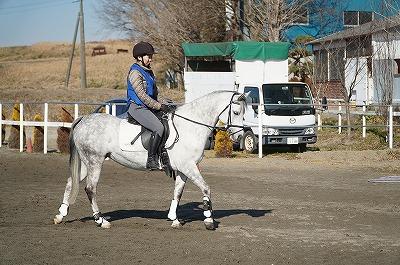 馬に優しい乗馬ができる