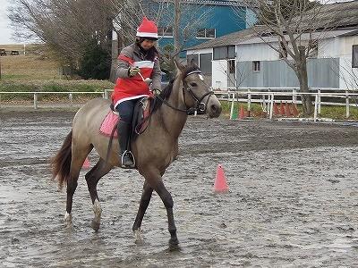 馬とお玉運びゲーム!