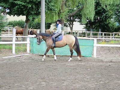 馬を愛そう