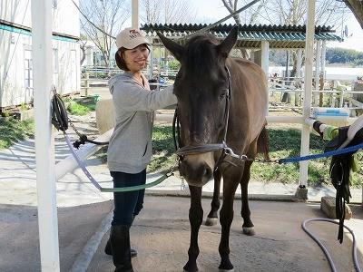 馬とのコミュニケーションを学ぶ