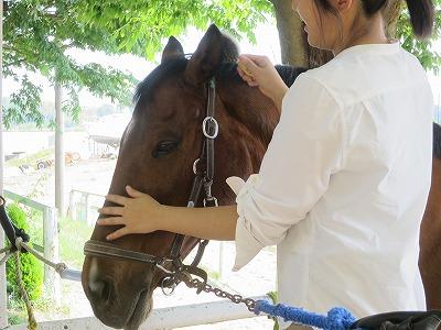馬に対する真剣さ=楽しさ