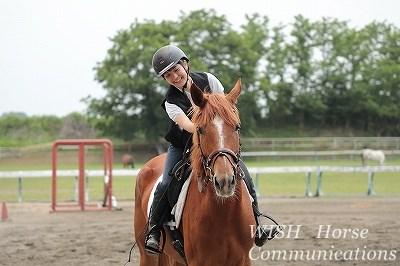 馬が幸せな乗馬