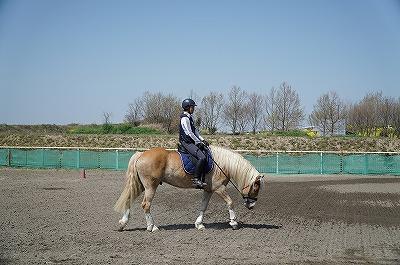 自分のレベルが上がれば馬のレベルも上がる