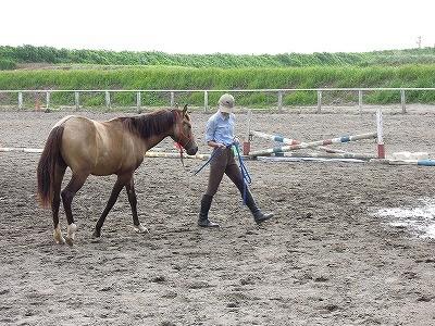 馬とともに成長