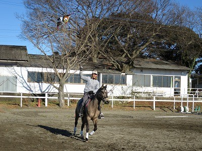 馬と一緒に凧揚げするとこんな感じ!