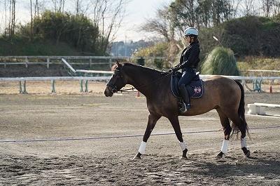 馬会話教室の乗馬